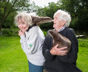 Otters with Mum and Dad